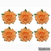 Цветы чайной розы, диаметр -18 мм, 6 шт., бежевые
