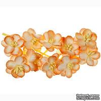 Цветы вишни из шелковичной бумаги, набор 10 шт., цвет персиковый