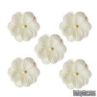 Братки, набор двойных цветов из шелковичной бумаги 5 шт., цвет белый