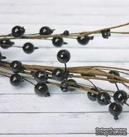 Веточка черноплодной рябины, средние ягодки, длина 40 см