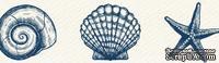 Бумажный скотч с принтом от Scrapberry's - Ракушки, 15мм x 8м