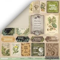 Лист односторонней бумаги для скрапбукинга  от Scrapmir - Карточки (RU) - Cozy Forest, 30х30