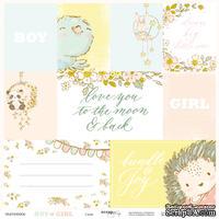 Лист односторонней бумаги от Scrapmir - Карточки (ENG) - Boy or Girl, 30x30см