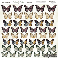 Лист двусторонней бумаги 20х20см Бабочки Family Tree от Scrapmir
