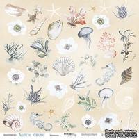 Лист односторонней бумаги от Scrapmir - Элементы - Nautical Graphic, 30x30см