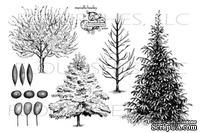 Набор акриловых штампов от Flourishes - Forest Of Trees Stamp Set