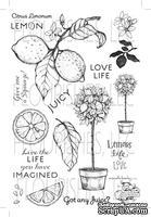 Набор акриловых штампов от Flourishes - Life, Love and Lemons Stamp Set