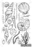 Набор акриловых штампов от Flourishes - Seaside Life Stamp Set