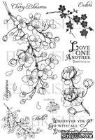 Набор акриловых штампов от Flourishes - Cherry Blossoms