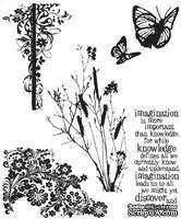 Резиновые штампы от Tim Holtz - Nature s Discovery, 5 шт.