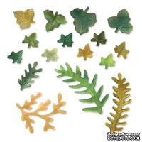 Ножи от Sizzix - Sizzix Thinlits Die Set 12PK - Leaves, Fern & Ivy