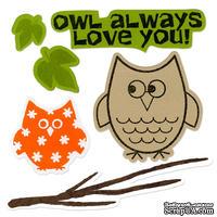 Набор лезвий с штампиками от Sizzix - Framelits Die Set 6PK w/Stamps - Autumn Owls, 6 шт.