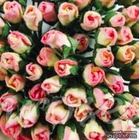 Буточники розы, цвет розовый с кремовым, диаметр - 4мм, 10 шт.