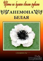 Набор тутовой бумаги для создания цветов - анемона белая