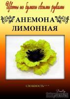 Набор тутовой бумаги для создания цветов - анемона лимонна