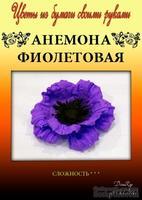 Набор тутовой бумаги для создания цветов - анемона фиолетовая