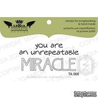 Акриловый штамп Lesia Zgharda TA068 You are unrepeatable miracle, размер 5x2,3 см
