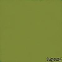Лист скрапбумаги от Echo Park - Green / Silver, 30х30 см