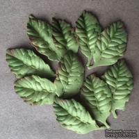 Листики из фоамирана, цвет зеленый, 10 шт.