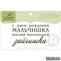 Акриловый штамп Lesia Zgharda TRU175 С Днем Рождения мальчишка, размер 5х2,9 см.