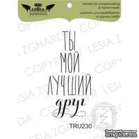 Акриловый штамп Lesia Zgharda TRU230 Ты мой лучший друг, размер 2х4 см