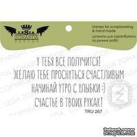 Набор акриловых штампов Lesia Zgharda TRU267 У тебя все получится!