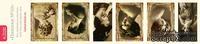 Полоски с картинками от Тамары Старцевой - №10, 21,5 см, 6 шт.