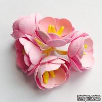 Цветы яблони, 5 штук, диаметр 18-20мм,  цвет - розовый
