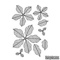 Резиновый ШТАМП Sue Wilson -Pinstriped Poinsettias