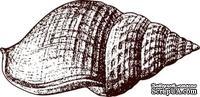 Акриловый штамп Stamp Shell 3 Ракушка, размер 4,5 * 2,2 см