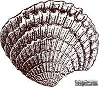 Акриловый штамп Stamp Shell 5 Ракушка, размер 2,2 * 1,9 см