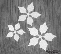 Высечки от Gallery Tools - Лепестки для белой пуансетии, 6 деталей.
