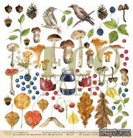 """Лист односторонней бумаги для скрапбукинга от EcoPaper - """"Лесные жители"""" из коллекции """"Осенний лес"""", 30.5х30.5"""