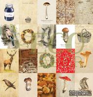 """Набор карточек от EcoPaper - """"Осенний лес"""", 20 шт"""