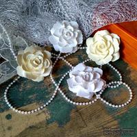 Набор бумажых цветов ручной работы-Avalanche - Cream