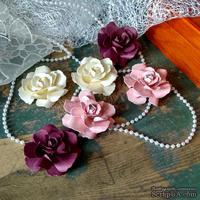 Набор бумажых цветов ручной работы-Avalanche - Dream