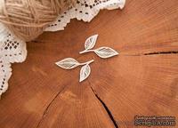 """Чипборд """"Листья прорезные, набор"""" от WOODchic, 4.2х2.6 см"""