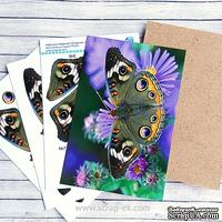 Заготовка для 3-Д картины Бабочка, 10х15 см