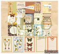 """Набор карточек от EcoPaper -  """"Атлас бабочек"""", 20шт."""