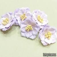 Магнолии от Scrap Klumba, фиолетовые,   5 шт., диаметр 4 см