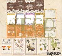 """Набор карточек от EcoPaper -  """"Тайны леса"""", 20шт."""