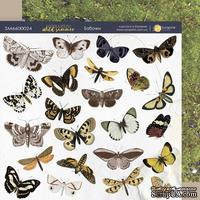Лист двусторонней бумаги 20х20см Бабочки Herbarium Wild summer от Scrapmir