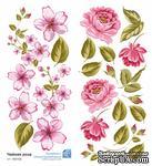 Набор картинок от Евгения Курдибановская ТМ - Чайная роза, розовый, 2 листа 9х20 см - ScrapUA.com