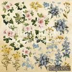 Лист для вырезания №1 Botany summer (рус.), ТМ Фабрика Декору - ScrapUA.com