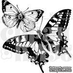"""Прозрачный фотополимерный штамп для скрапбукинга от ПСК """"Две бабочки"""" - ScrapUA.com"""