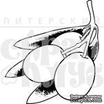Штамп от Питерского Скрапклуба - Греция. Оливки, 3х3.3 см - ScrapUA.com