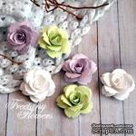 Набор цветовFreetanyFlowers–Весна - ScrapUA.com
