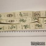 Лента от Thailand - Lovely Bear Print Cotton Ribbon Label String, 1 метр - ScrapUA.com