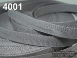 Киперная лента Cool Gray, ширина 10 мм, цвет серый, длина 90 см - ScrapUA.com