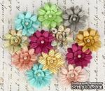 ЦЕНА СНИЖЕНА! Набор цветов Prima - Divine Daisies - ScrapUA.com